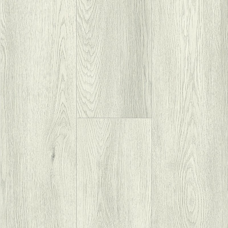 Off White Oak 0579
